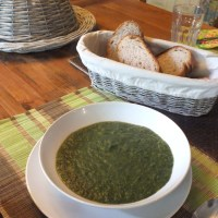 Foraging in France: Nettle Soup Recipe (Guest post from my Mum)