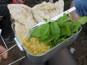 How to Survive a UK Music Festival as aVegetarian