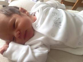 Introducing our new mini Veghotpot family member! Baby Darryl x